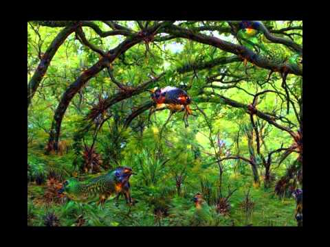 Deep Dream: The Grove - Exploring Layers