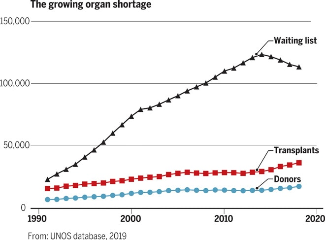 Over 100,000 people are on waiting lists. Organ transplantation from pigs has helped shrink the list in recent years.